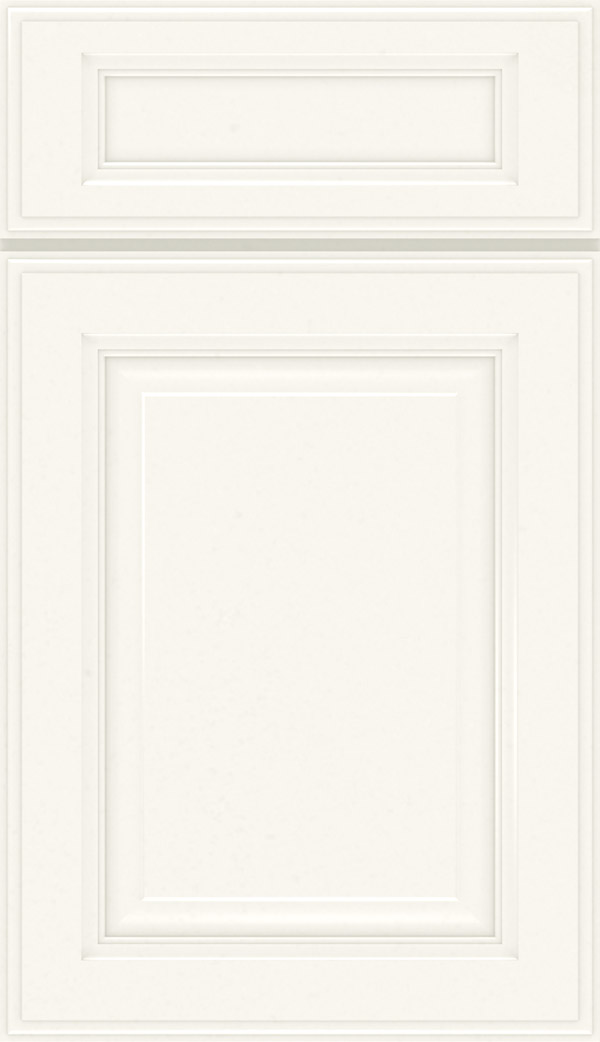Briarcliff II 5-Piece Maple raised panel cabinet door in White