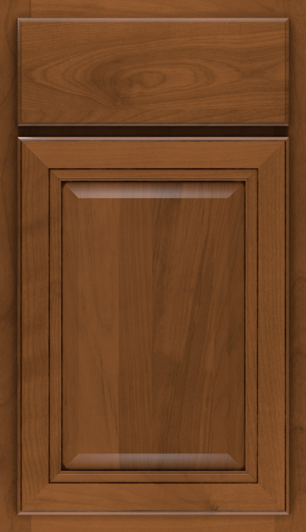 Saybrooke Birch cabinet door in Pumpernickel