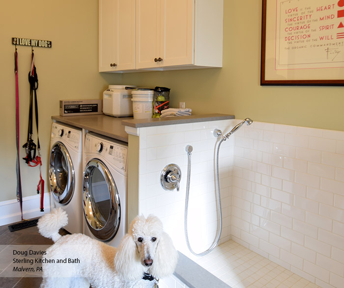 Laundry room with white wall cabinets and a pet-bathing station